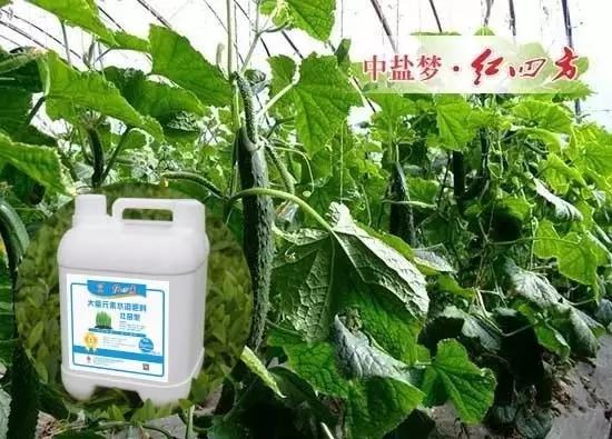 壮苗型水溶肥含氮磷钾、微量元素、有机质、腐植酸、氨基酸,养分平衡,预防和矫正作物因缺素引起的生理性病害
