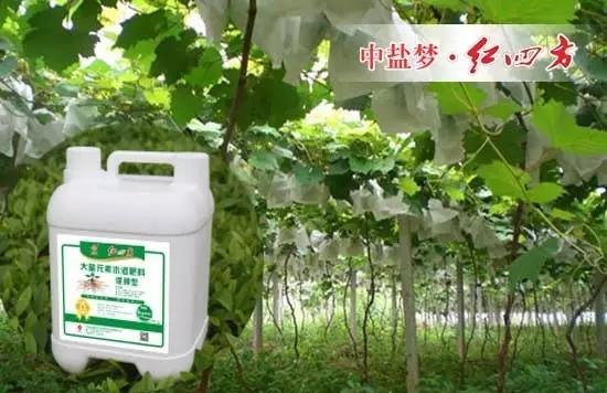促根型水溶肥含氮磷钾、微量元素、有机质、腐植酸、氨基酸,养分全面