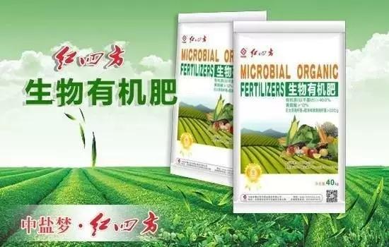 生物有机肥有效螯合中量元素,减轻作物缺素症,同时也有效络合大量元素,避免肥料养分流失;能很好降解土壤中有机磷,使作物吸收更多的养分
