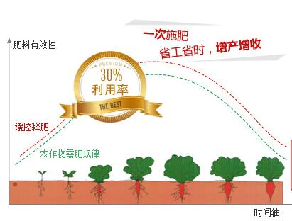 玉米专用肥肥效释放图