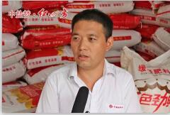 蒙城胡海民:红色劲典缓释肥 7年耕耘赢得好口碑